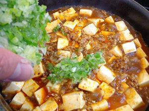 麻婆豆腐16