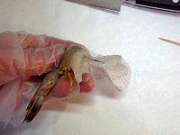 海老のトマトクリーム煮込み03