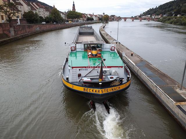 Heidelberg3 265