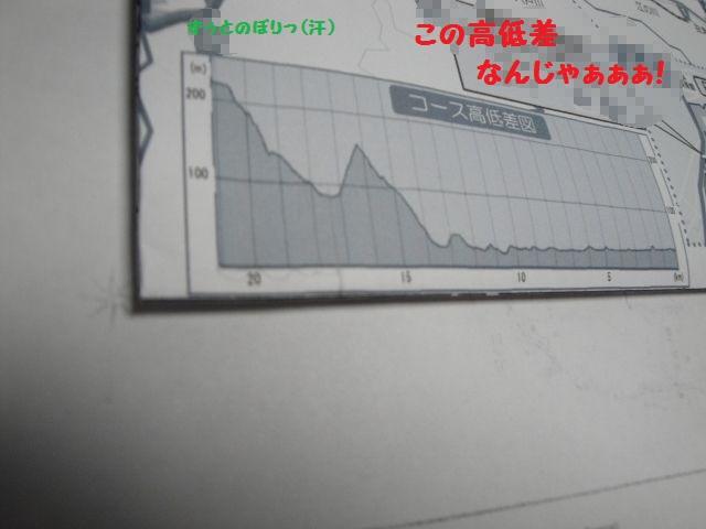 DSC00813 (640x480)