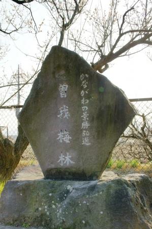 DSC01289小田原