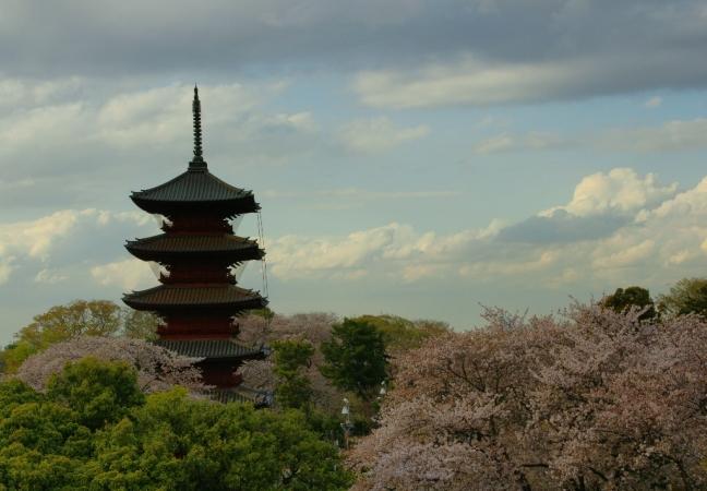DSC03389池上桜