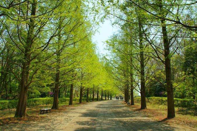 DSC04131かいひん公園