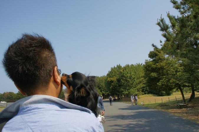 DSC04554かいひん公園
