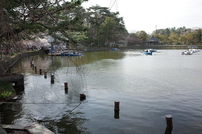 千葉公園5