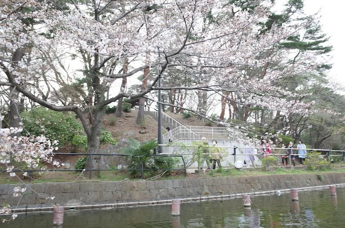 千葉公園8