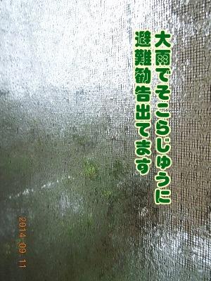 2014091101.jpg
