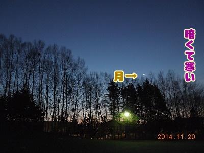 2014112011.jpg