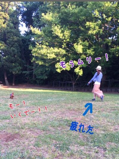 fc2blog_201405221739314bb.jpg