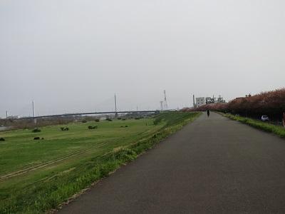 20140412_034.jpg