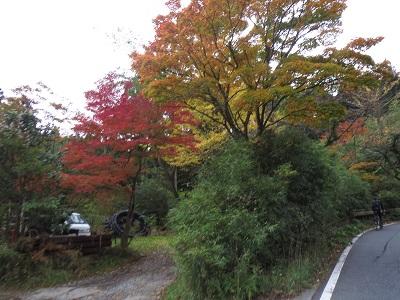 20141108_022.jpg