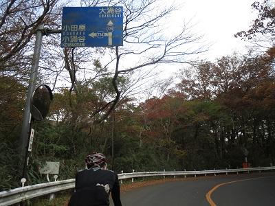 20141108_028.jpg