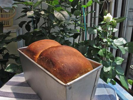 湯ごねパン 1