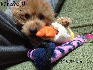 ひさびさのおもちゃ2