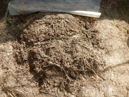 培養土作り (2)
