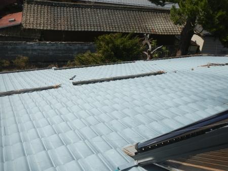 屋根の上 (2)