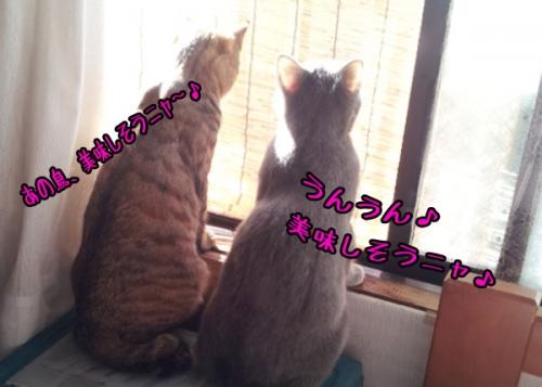 20140111_1029091.jpg