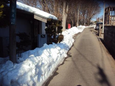 道路わきには雪がいっぱい