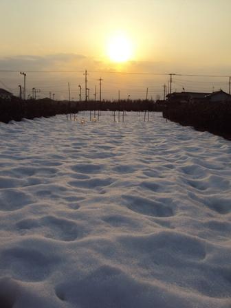 雪の表面は凸凹