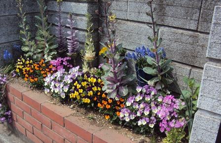 正面の花壇