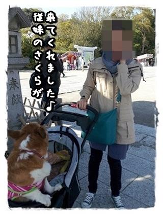 20140404_142006.jpg