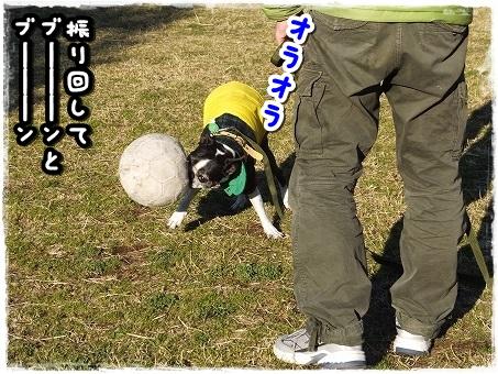 DSCF3393.jpg