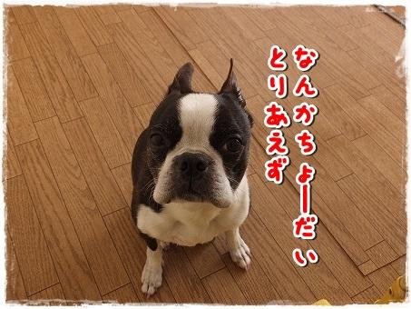 DSCF4638.jpg