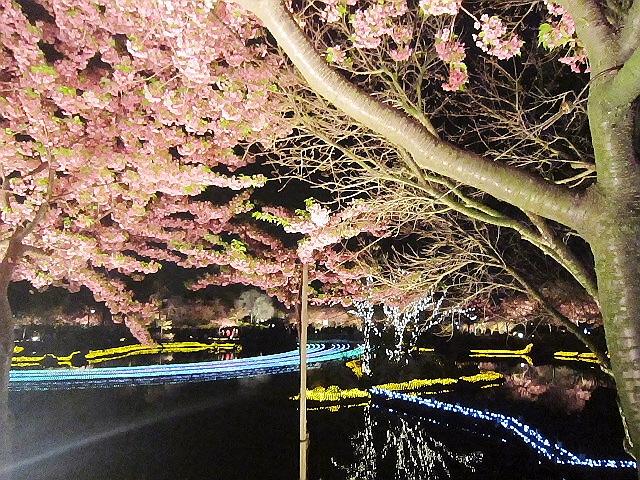 2014.3.29 初めての『なばなの里』イルミネーションヽ(^o^)丿