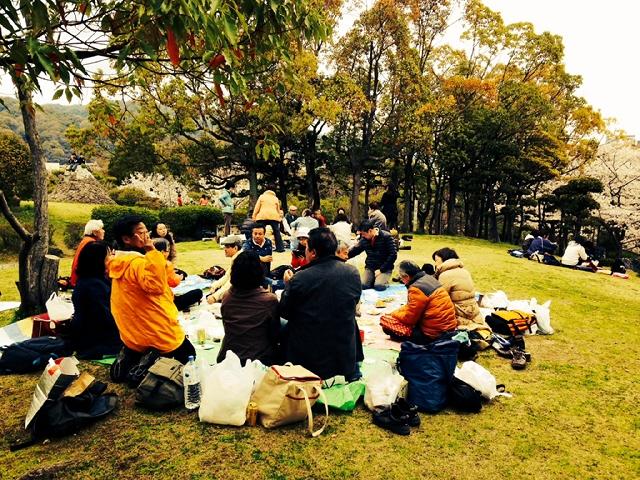 2014.4.5 大倉山公園で立呑み仲間とお花見をしました!(^^)!