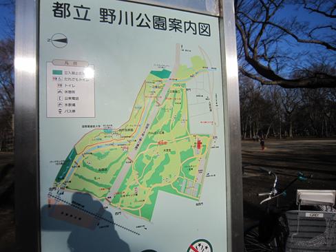 140315 野川公園09