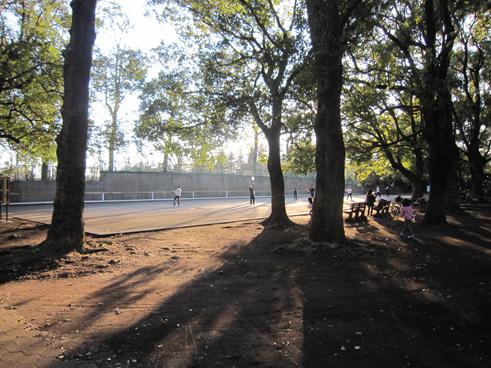 140315 野川公園13