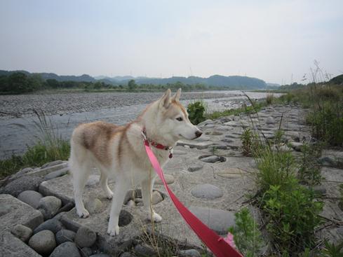140525 鬼怒川08