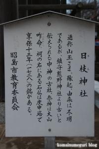 日枝神社(昭島市中神町)5
