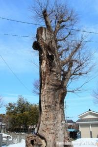 熊野神社(あきる野市小川)11