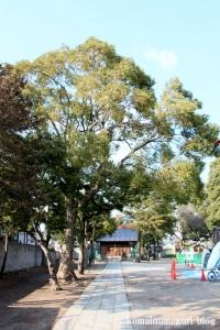天祖神社(江戸川区南小岩)2
