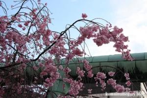 住吉神社(中央区佃)2