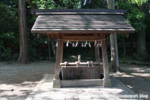 氷川神社(さいたま市大宮区高鼻町)43