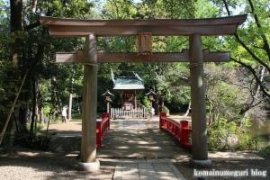 氷川神社(さいたま市大宮区高鼻町)44