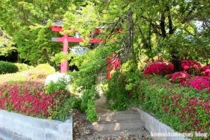染谷氷川神社(さいたま市見沼区染谷)1