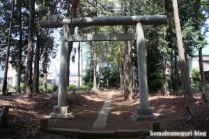 神明神社(さいたま市見沼区南中丸)2
