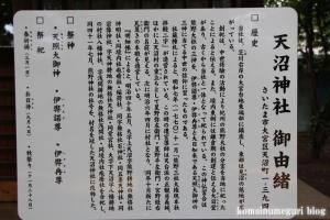 天沼神社(さいたま市大宮区天沼町)6