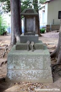 天沼神社(さいたま市大宮区天沼町)11