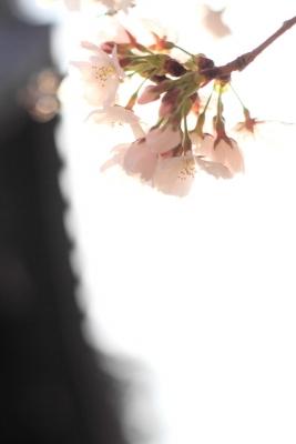 221_2014-03-28-08-07-57.jpg