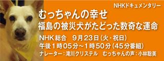NHK-_320x120.jpg