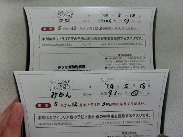 s-CIMG8258.jpg