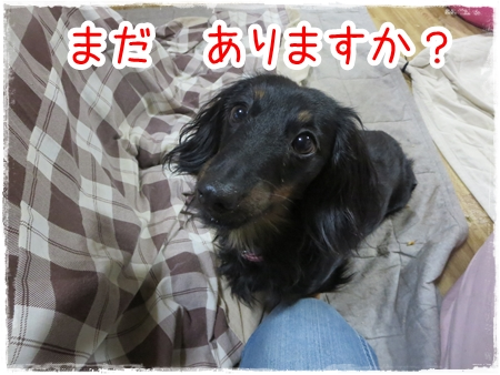 IMG_0325_13.jpg