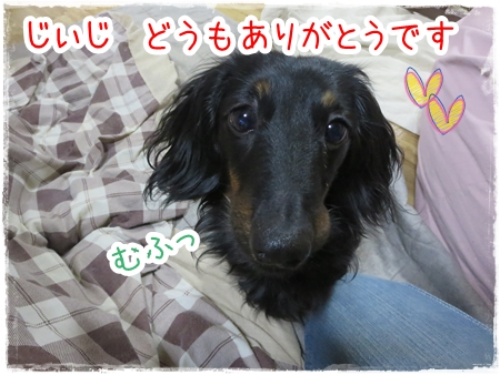 IMG_0325_14.jpg