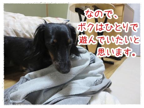 IMG_0401_2.jpg