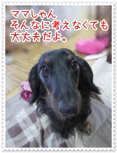 IMG_0402_1.jpg