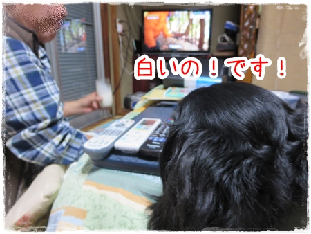 IMG_0413_7.jpg
